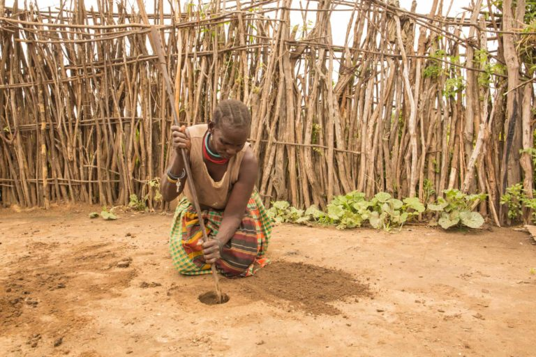 How can Cow Dung be used as a Menstrual Pad?